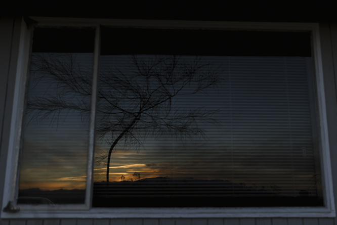 joshua_tree_window_sunrise